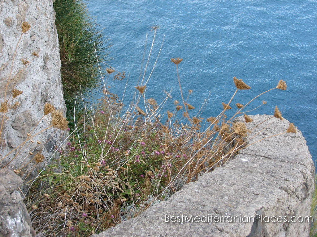 From the height of the walls is a special feeling steepness of the cliff on which the pirates tried to get to the castle