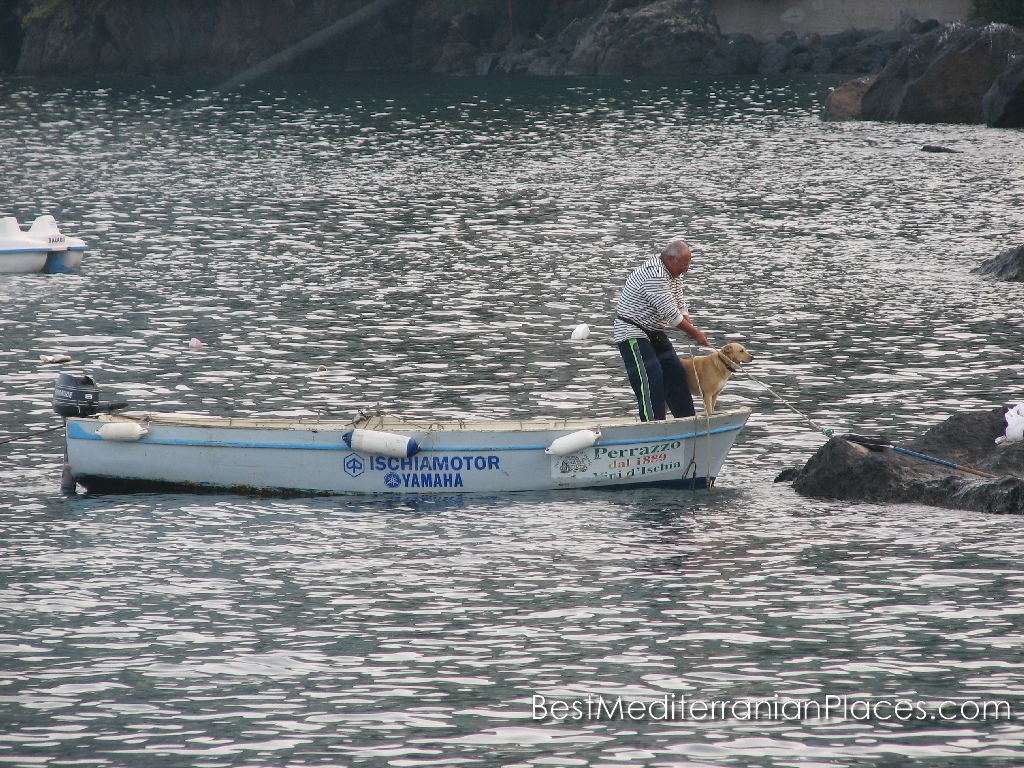 The dog helps the fisherman boat dock after a successful fishing