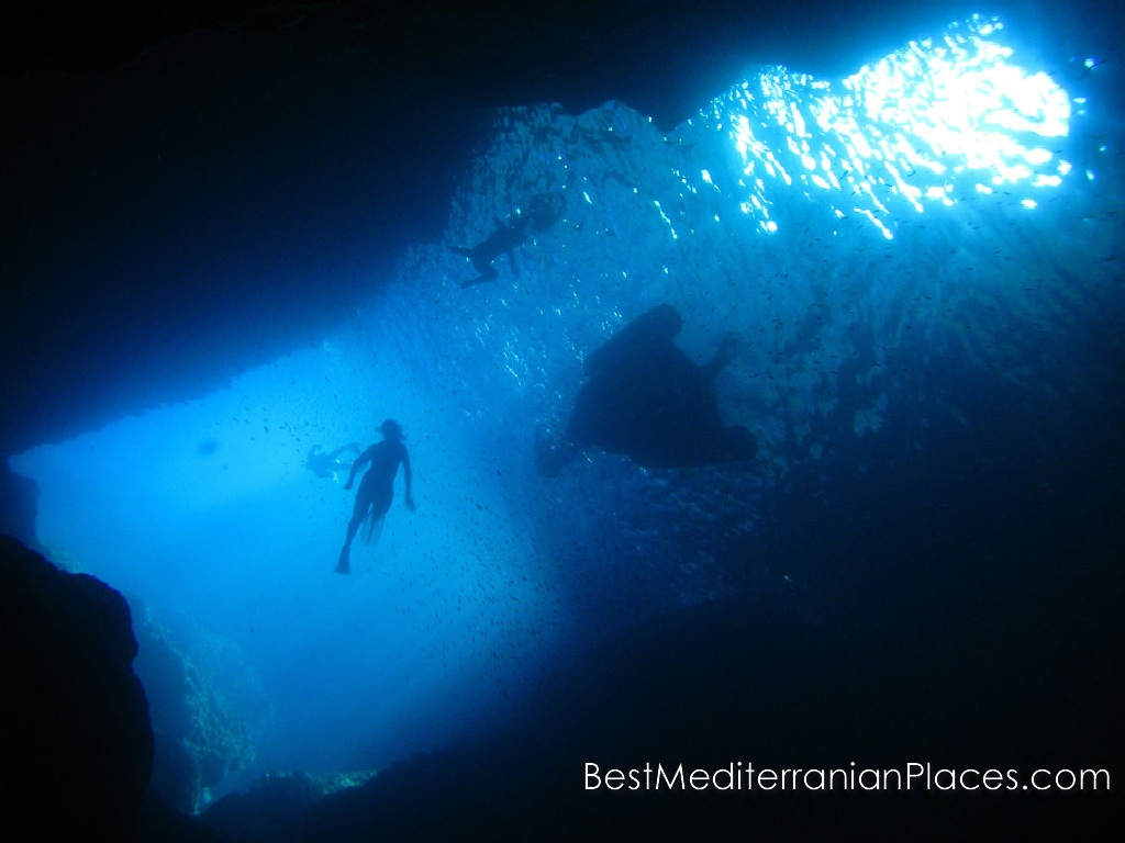 Discover the underwater world of the Adriatic