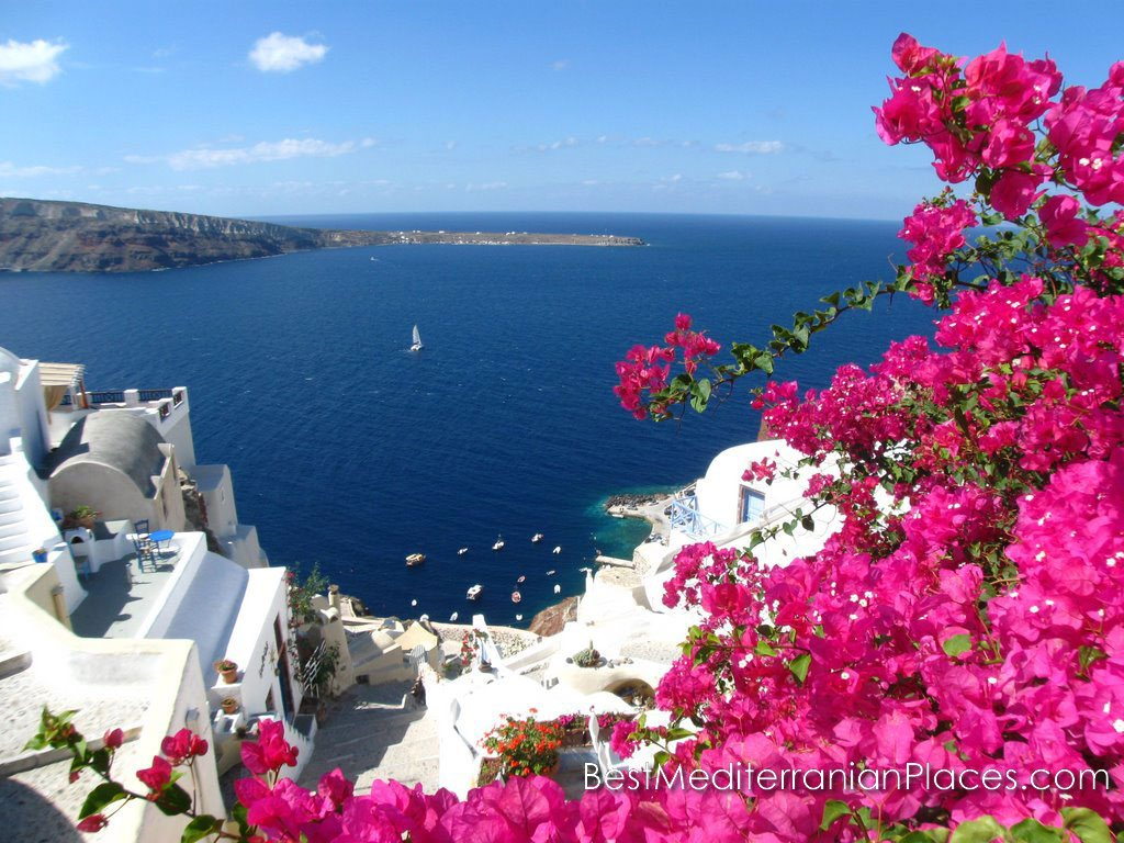 Blue sea and bougainvillea flowers are the Santorini inherent colors