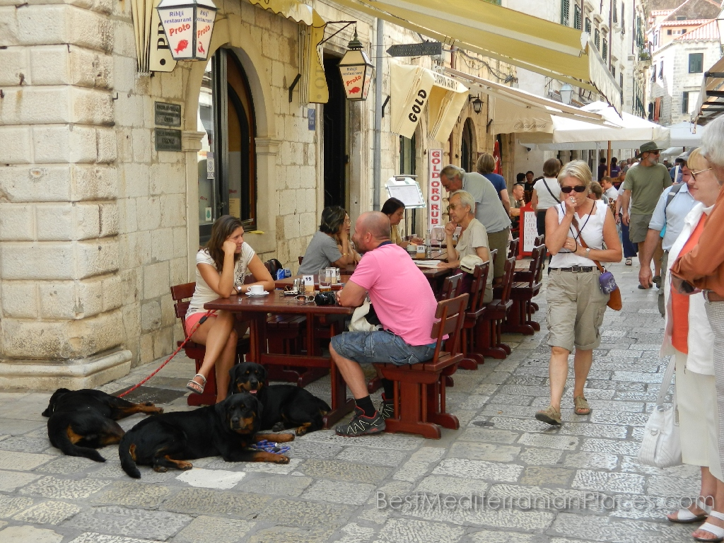 Not only humans, but also dogs feel comfortable in a street cafe in Dubrovnik